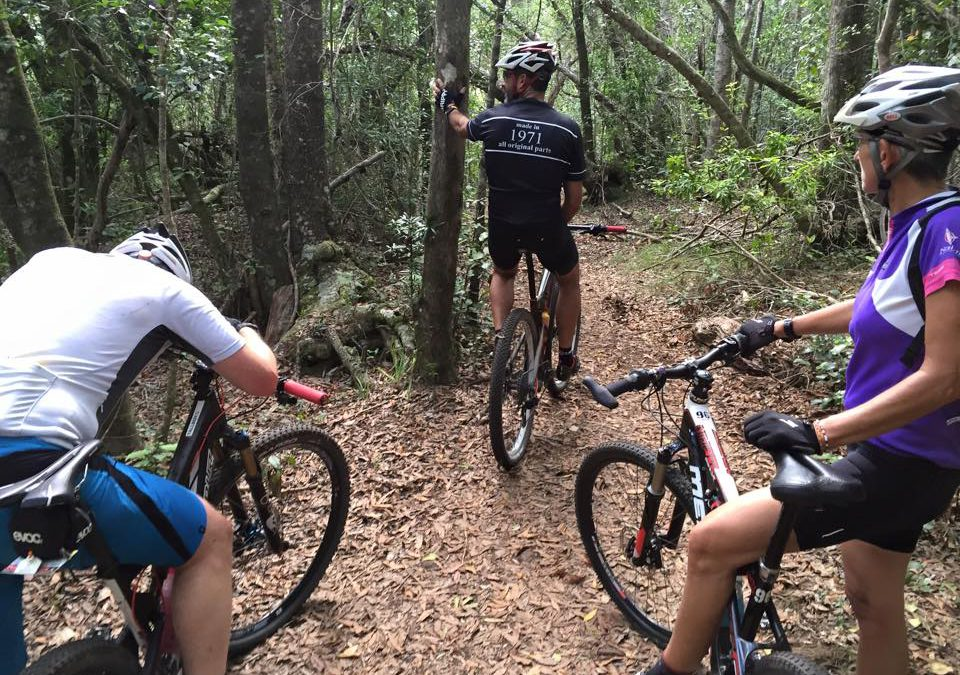 Cycling in Knysna