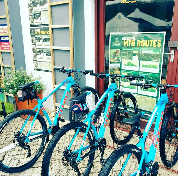 bike hire in Knysna