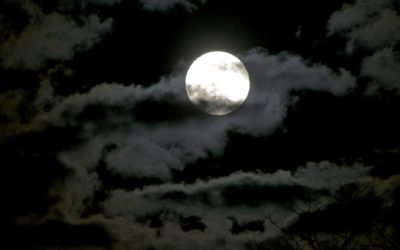 Next #moonlightmassknysna